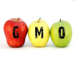 فرق محصولات ارگانیک با تراریخته چیست ؟