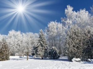 شعر درباره ی فصل زمستان | ۳۰ شعر برتر و عاشقانه در مورد زمستان