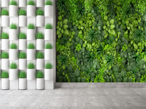 دیوار سبز مصنوعی چیست؟
