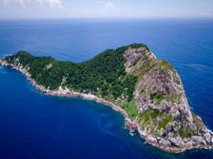 معرفی جزیره مارها برزیل مکانی ممنوعه