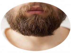 هر آنچه که باید در مورد کاشت ریش بدانید
