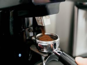 تفسیر کامل قورباغه (وزغ) در فال قهوه