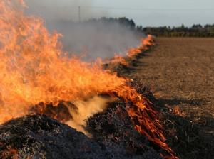 آتش سوزی مهیب در ارتفاعات سیوان مرند + علت چه بود ؟