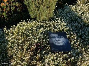 اولین تصاویر منتشر شده از مزار مرحوم شجریان در مشهد