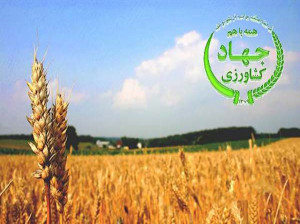 تاریخ روز جهاد کشاورزی در تقویم سال ۹۹ چه روزی است ؟