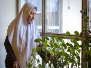 تاریخ روز جهانی مادربزرگ در تقویم 99 چه روزی است ؟