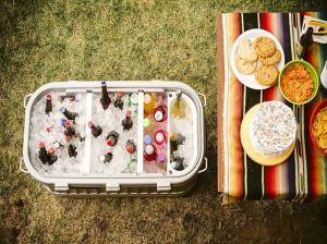 نحوه مراقبت از خوراکی های منجمد در سفر