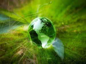 20 عکس پروفایل یونیک و جدید ویژه روز محیط زیست