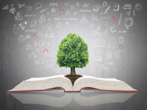 انشا محیط زیست : 10 انشا برای روز جهانی محیط زیست
