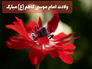 15 شعر ناب و خاص ویژه ولادت امام موسی کاظم (ع)