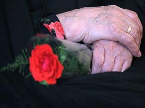 هرشاخه گل برای روز مادر چند؟