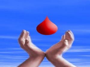 فواید اهدای خون برای بدن شما