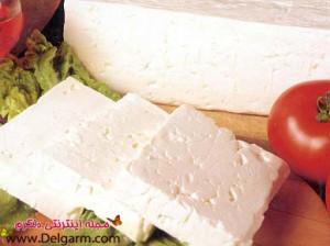 خواص پنیر و خاصیت های جالب پنیر