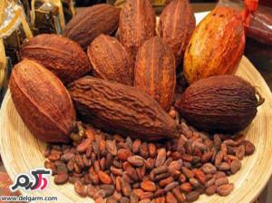 آیا فرق میان شکلات و کاکائو را می دانید؟