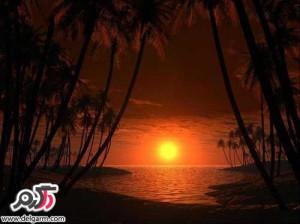 تصاویری از از زیبایی های غروب خورشید