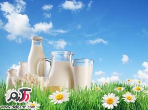 معرفی خواص اعجاب انگيز شیر بز
