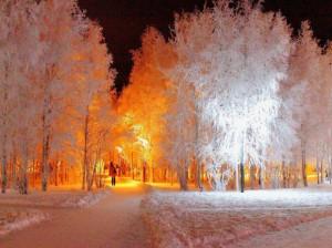 تصاوير زيبا از زمستان سري هفتم