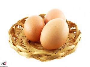 خاصیت تخم مرغ بومی نسبت به تخم مرغ ماشینی