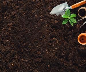 لیست قیمت خاک و کود