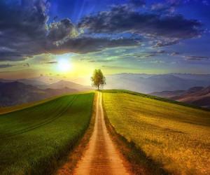 شعر چه روزها که برای تو منتظر ماندم از حکیم جوزجانی