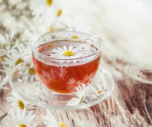 طرح توجیهی تولید چای کیسه ای با منشأ گیاهان دارویی
