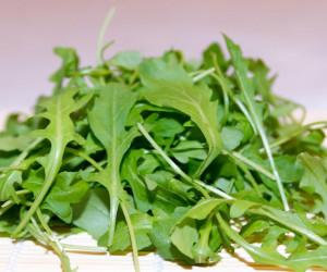 خواص روغن و گیاه منداب چیست ؟