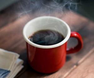 دیدن الاغ در فال قهوه چه تعبیری دارد ؟