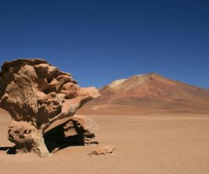 خشک ترین مکان روی زمین کجاست ؟