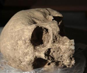 تصاویری جالب از ۱۳ اسکلت انسانی تازه کشف شده در تخت جمشید