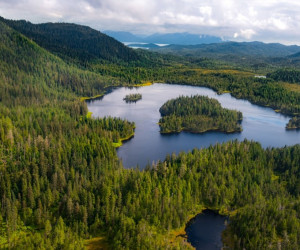 تعبیر خواب دریاچه : 31 نشانه و تعبیر دیدن دریاچه در خواب
