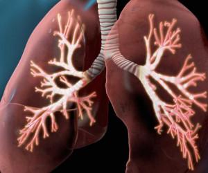 پزشکان فوق تخصص ریه در بجنورد به همراه آدرس و تلفن