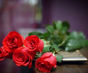 معرفی گل های مختلف برای مناسبت های خاص