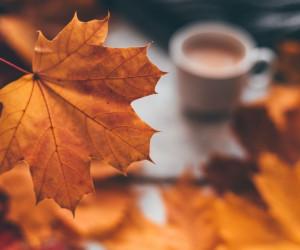 77 عکس زیبا و رویایی پاییز برای بک گراند و پروفایل