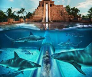 با ترسناک ترین پارک آبی دنیا آشنا شوید! +عکسی