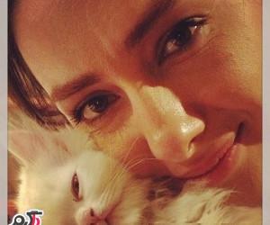 عکس جدید هانیه توسلی با گربه ملوسش