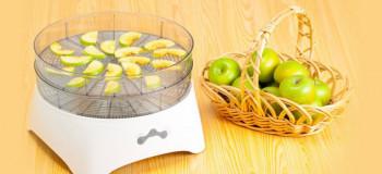 لیست قیمت میوه و سبزی خشک کن