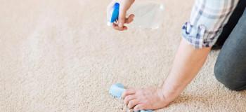 بوی بد شیر ریخته شده روی فرش را با ۴ روش می توان از بین برد