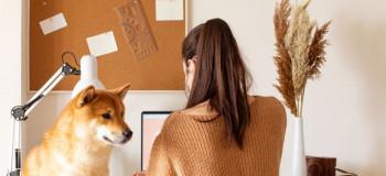 خرید و فروش سگ گناه است یا حرام ؟
