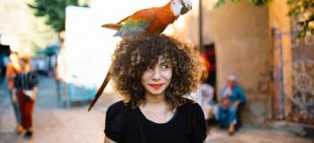 با ۱۰ پرنده زیبا و سخنگو دنیا آشنا شوید