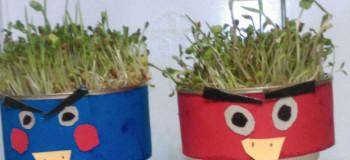 ۱۵ کاردستی سبزه برای سفره هفت سین