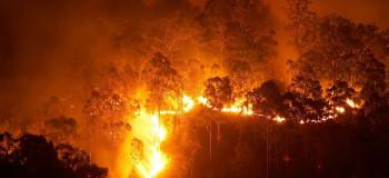 ۶ روز آتش سوزی در جنگل های گچساران بدون اطفاء !