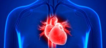 ۲ انشا با موضوع جانشین سازی قلب برای پایه دهم