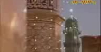 کلیپ ضامن آهو رضا لاله خوشبو رضا (ع)