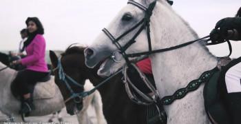 کلیپ اسب سواری با اهنگ