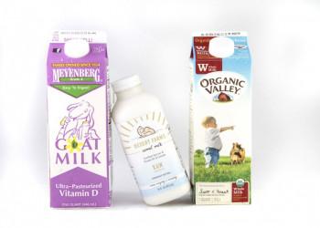 10 مورد از خاصیت های بی نظیر شیر شتر برای سلامتی