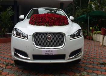 20 مدل از زیباترین مدل تزیین ماشین عروس ایرانی و خارجی (2)