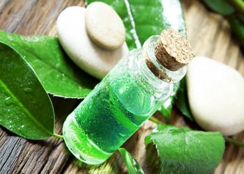 13 خاصیت معجزه آسا روغن چای برای سلامتی پوست و مو