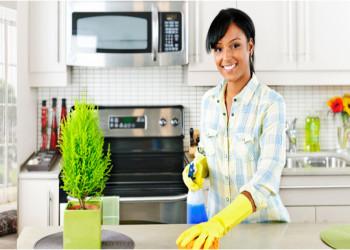 خانه تکانی بدون استفاده از شوینده های شیمیایی/خانه تکانی با براق کننده های طبیعی