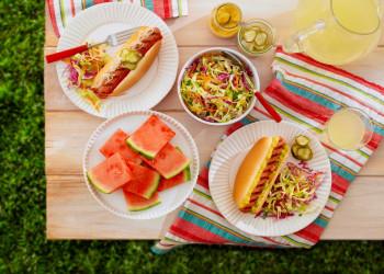 یک برنامه غذایی عالی برای پیک نیک در فصل تابستان