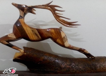 عکس از پیکر تراشی چوبی (با دست)